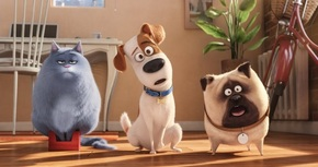 Cinesa Proyecciones de Madrid permitirá el acceso de perros al estreno de 'Mascotas'