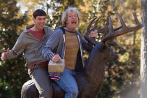 Primera imagen oficial de la secuela de 'Dos tontos muy tontos'