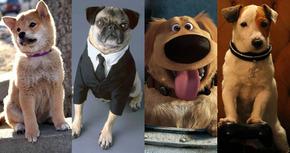 18 perros de cine que han pasado a la historia
