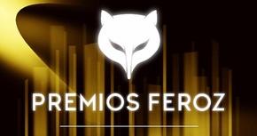 Los Premios Feroz incorporan nuevas categorías: televisión y documentales