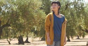 Finaliza el rodaje de 'El olivo', el nuevo largometraje de Icíar Bollaín