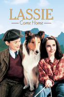 Lassie: La cadena invisible