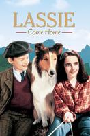 Lassie: La cadena invisible