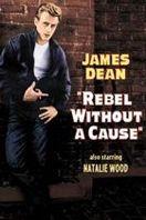 Rebelde sin causa